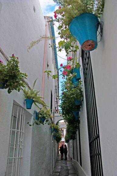 Calleja de las Flores